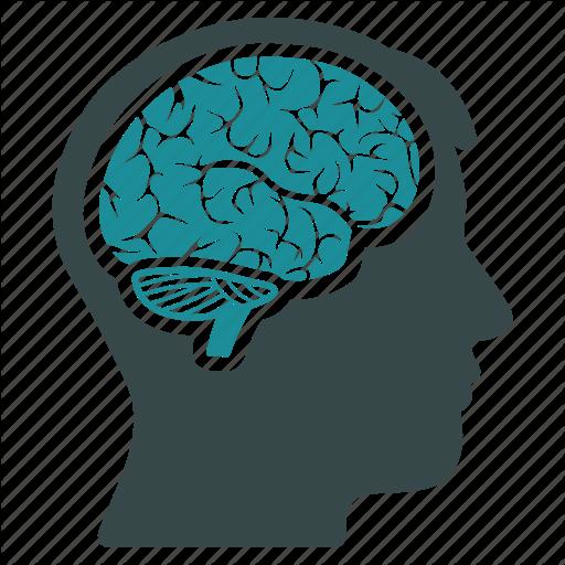 brain_mind_thinking_idea_memory_think_human_organ_v2-512